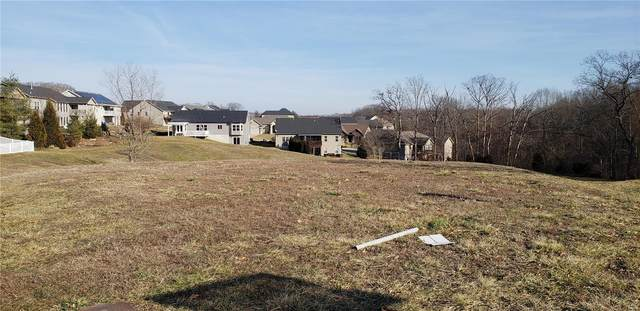 1234 Riesling Lane, Pevely, MO 63070 (#21007472) :: Clarity Street Realty