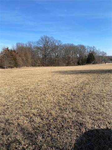 0 Parcel# 11230000008000000, Marthasville, MO 63357 (#21007813) :: Clarity Street Realty