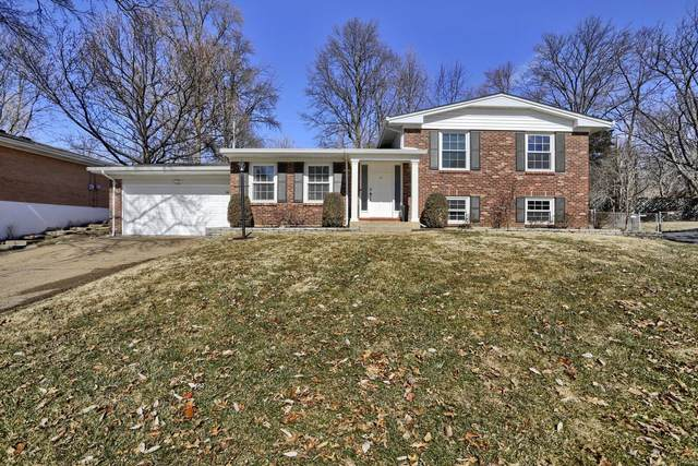 7201 Briarview, St Louis, MO 63123 (#21007950) :: Reconnect Real Estate