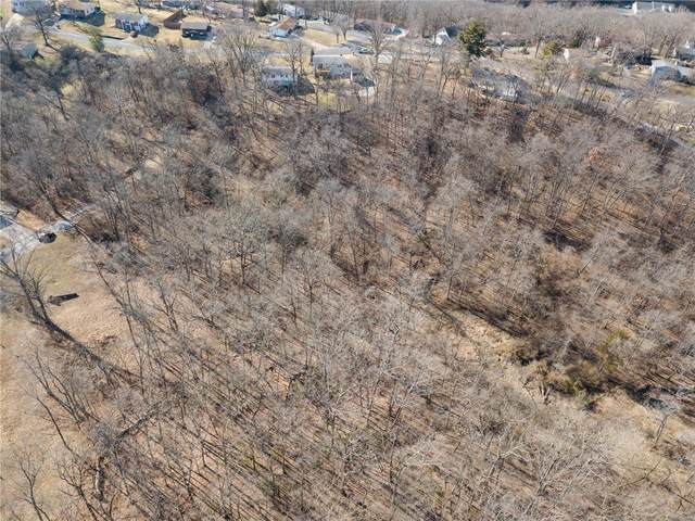 1 Butternut- Lot 57, Arnold, MO 63010 (#21008044) :: Mid Rivers Homes