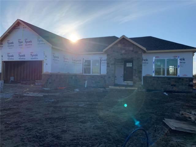 1005 Torrey Lane, Freeburg, IL 62243 (#21008214) :: Matt Smith Real Estate Group