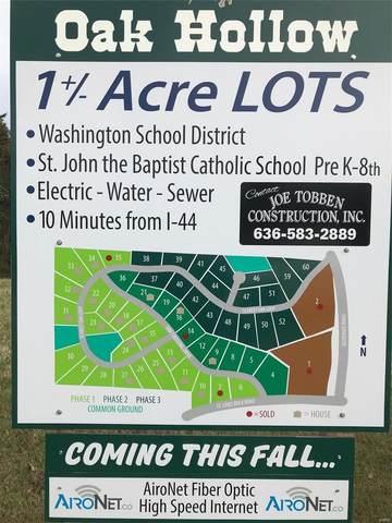 664 Oak Crossing (Lot #12) Drive, Villa Ridge, MO 63089 (MLS #21009129) :: Century 21 Prestige