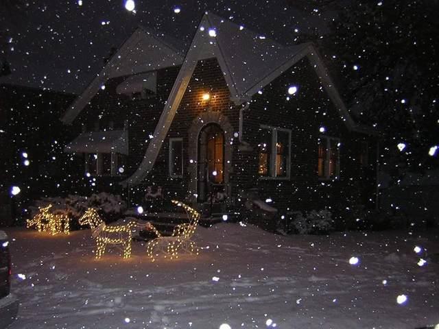 3829 Blow Street, St Louis, MO 63116 (#21009327) :: Jeremy Schneider Real Estate