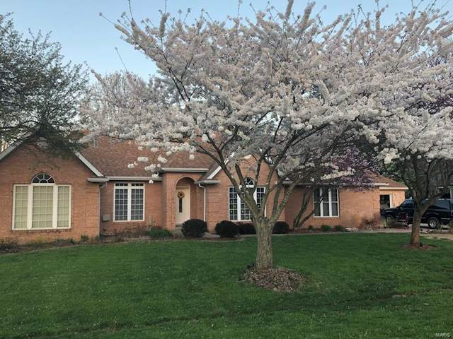 2 Lindenwood Drive, Collinsville, IL 62234 (#21009837) :: Fusion Realty, LLC