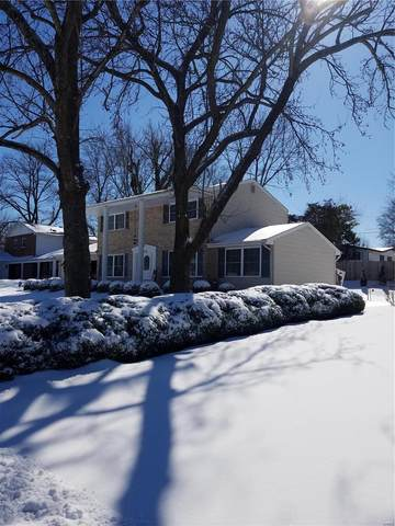 12546 Sunview, St Louis, MO 63146 (#21010029) :: Parson Realty Group