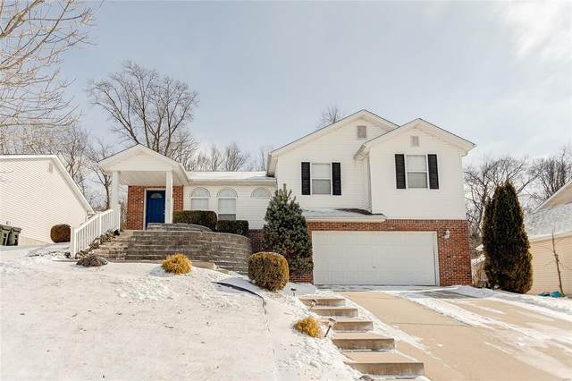 2587 Lakeshore, Columbia, IL 62236 (#21010262) :: Kelly Hager Group | TdD Premier Real Estate