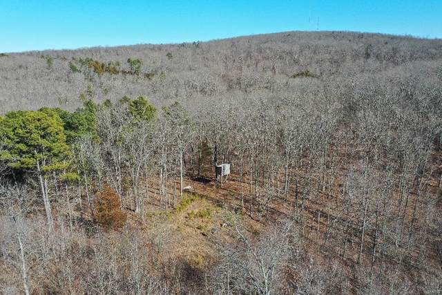 0 Off Madison 413, Fredericktown, MO 63645 (#21011042) :: Kelly Hager Group | TdD Premier Real Estate
