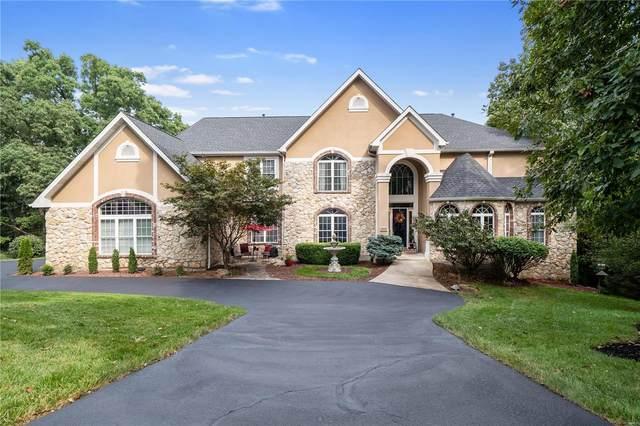 16648 Bartizan Drive, Wildwood, MO 63038 (#21011394) :: Jeremy Schneider Real Estate