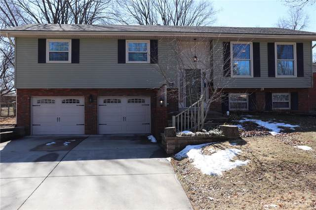 610 Julia Drive, O'Fallon, IL 62269 (#21011600) :: Tarrant & Harman Real Estate and Auction Co.