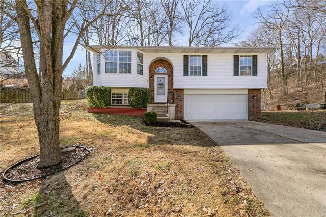 5038 Country Valley, Imperial, MO 63052 (#21011782) :: Realty Executives, Fort Leonard Wood LLC