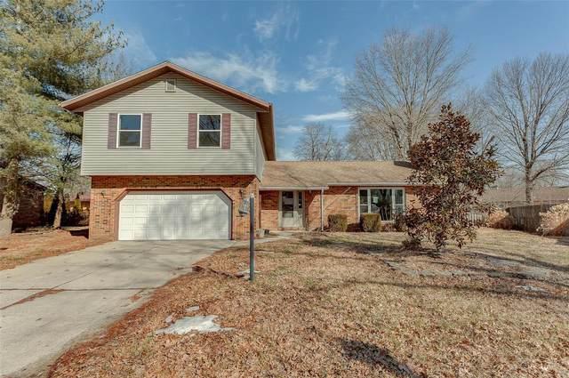 508 Millstone Drive, Belleville, IL 62221 (#21011795) :: Parson Realty Group
