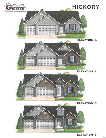 379 Spring Valley Run (Lot 69 Bw), Festus, MO 63028 (#21011851) :: Kelly Hager Group | TdD Premier Real Estate
