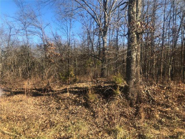 21 S Co.Rd. 21S-1B, Doniphan, MO 63935 (#21011860) :: Clarity Street Realty