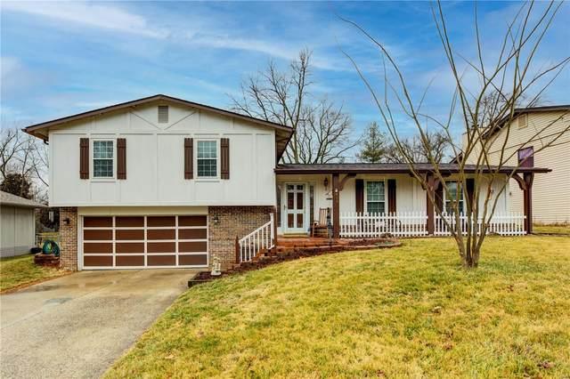419 Willow Wood Court, Saint Charles, MO 63303 (#21011865) :: Matt Smith Real Estate Group