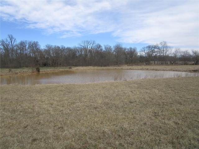 0 Pcr 300, Perryville, MO 63775 (#21012591) :: Clarity Street Realty