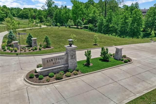 3300 Gray Oak Drive, Edwardsville, IL 62025 (MLS #21012793) :: Century 21 Prestige