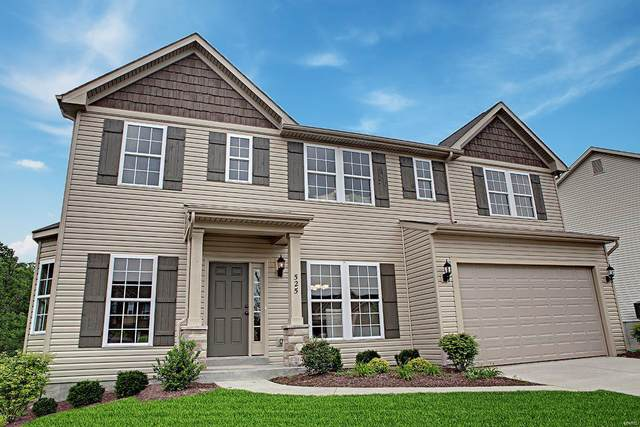721 Grand Teton Drive, Troy, MO 63379 (#21013325) :: The Becky O'Neill Power Home Selling Team