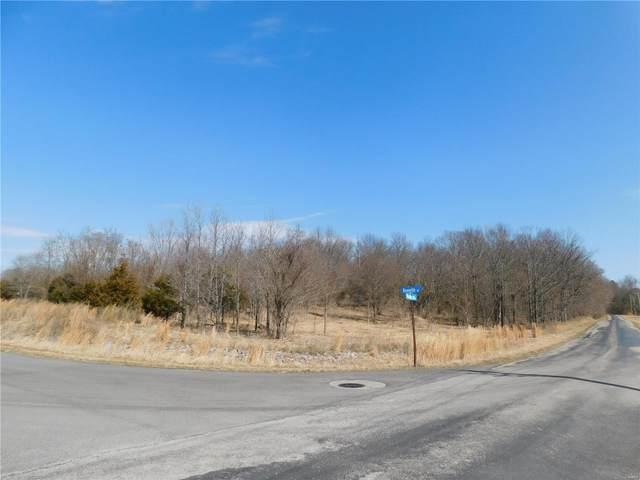 0 Minuteman Drive, MARION, IL 62959 (#21013884) :: Century 21 Advantage