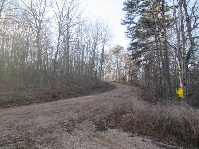 37 Lakeview Trail, Raymondville, MO 65555 (#21014037) :: Matt Smith Real Estate Group