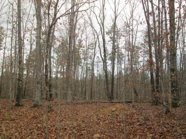 148 Golden Trail, Raymondville, MO 65555 (#21014111) :: Clarity Street Realty