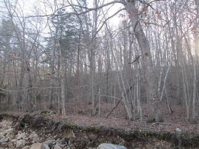 146 Golden Trail, Raymondville, MO 65555 (#21014115) :: Clarity Street Realty