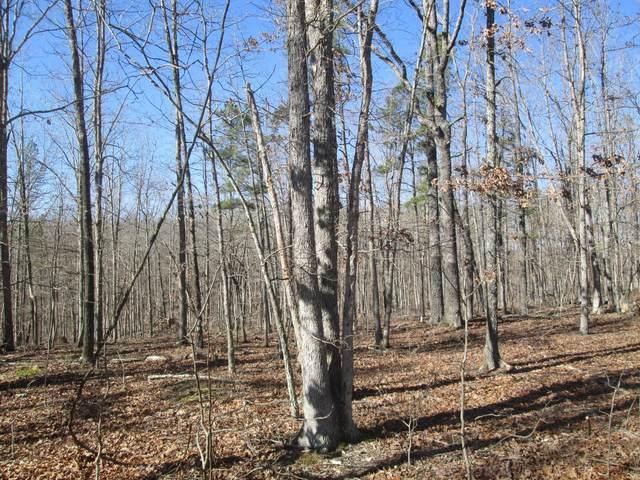 130 Ridge Crest Trail, Raymondville, MO 65555 (#21014140) :: Clarity Street Realty