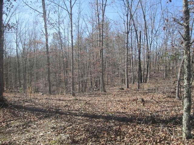 125 Ridge Crest Trail, Raymondville, MO 65555 (#21014141) :: Clarity Street Realty