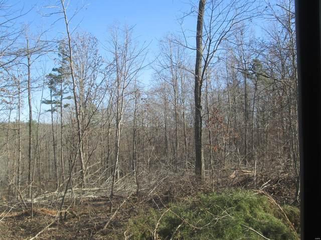 127 Big Tree Trail, Raymondville, MO 65555 (#21014149) :: Clarity Street Realty