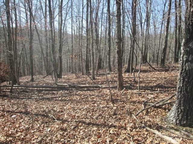 143 Ridge Crest Trail, Raymondville, MO 65555 (#21014187) :: Clarity Street Realty