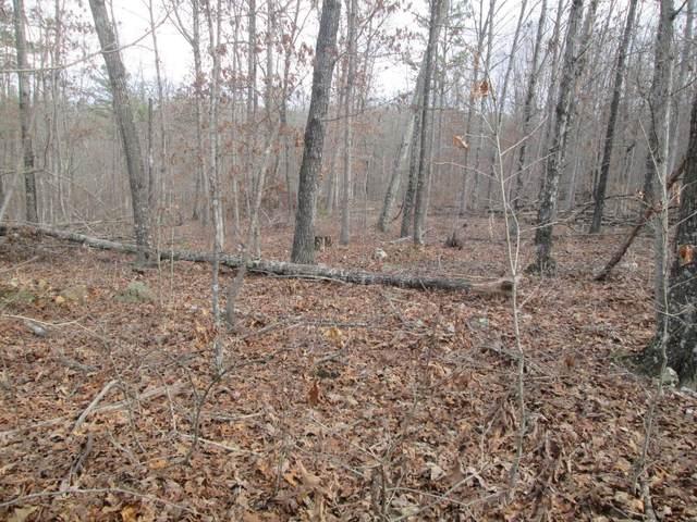 140 Sage Brush Trail, Raymondville, MO 65555 (#21014189) :: Clarity Street Realty