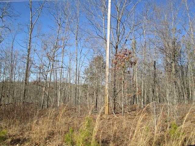 118 Heritage Trail, Raymondville, MO 65555 (#21014192) :: Clarity Street Realty