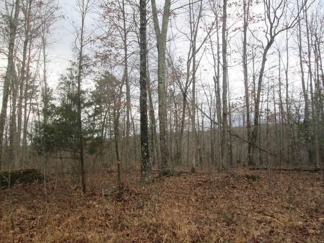 152 Golden Trail, Raymondville, MO 65555 (#21014204) :: The Becky O'Neill Power Home Selling Team