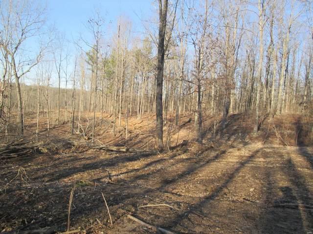 69 Pine Meadow Trail, Raymondville, MO 65555 (#21014205) :: Krista Hartmann Home Team