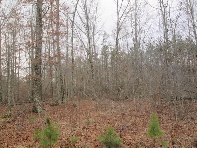 145 Sage Brush Trail, Raymondville, MO 65555 (#21014206) :: Krista Hartmann Home Team