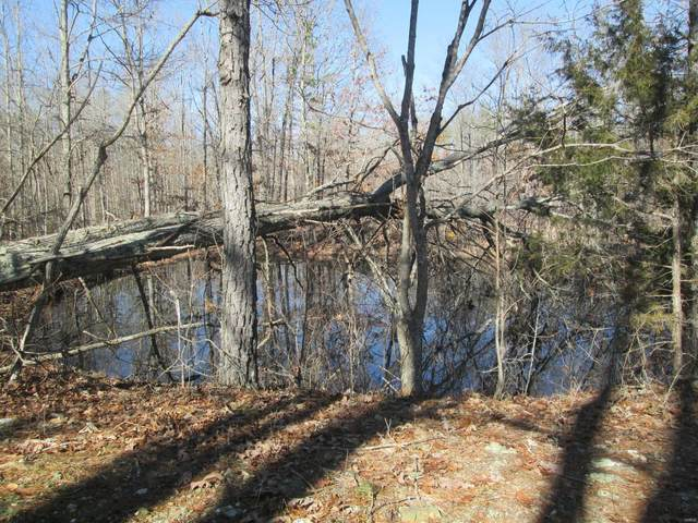 136 Ridge Crest Trail, Raymondville, MO 65555 (#21014208) :: Krista Hartmann Home Team