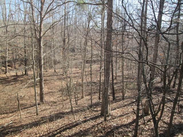 115 Ridge Crest Trail, Raymondville, MO 65555 (#21014209) :: Matt Smith Real Estate Group