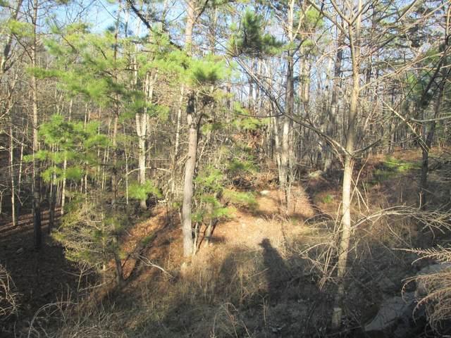 55 Golden Trail, Raymondville, MO 65555 (#21014216) :: The Becky O'Neill Power Home Selling Team