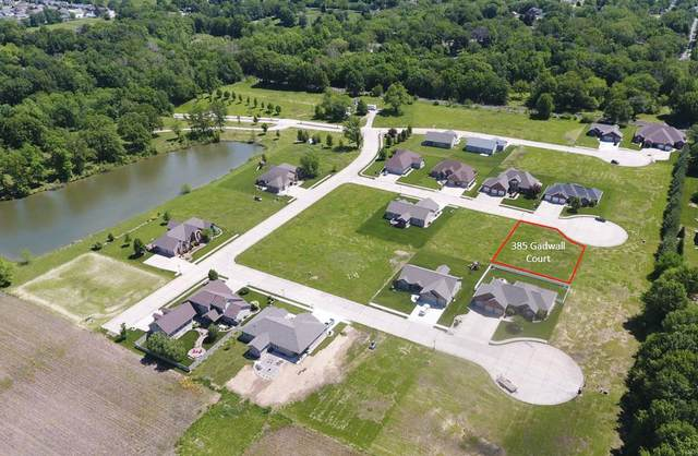 385 S Gadwall Court, STAUNTON, IL 62088 (#21014799) :: Tarrant & Harman Real Estate and Auction Co.