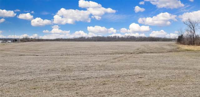 0 16.31+/- Acres S. Ethlyn Rd., Moscow Mills, MO 63362 (#21015491) :: St. Louis Finest Homes Realty Group