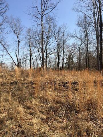 0 Timber Way Lot 33, Poplar Bluff, MO 63901 (#21015620) :: Parson Realty Group