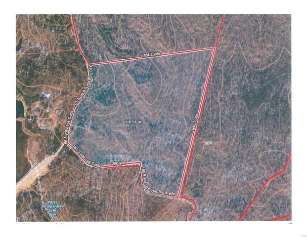 0 Cedar Hollow, Fletcher, MO 63664 (#21016011) :: Parson Realty Group
