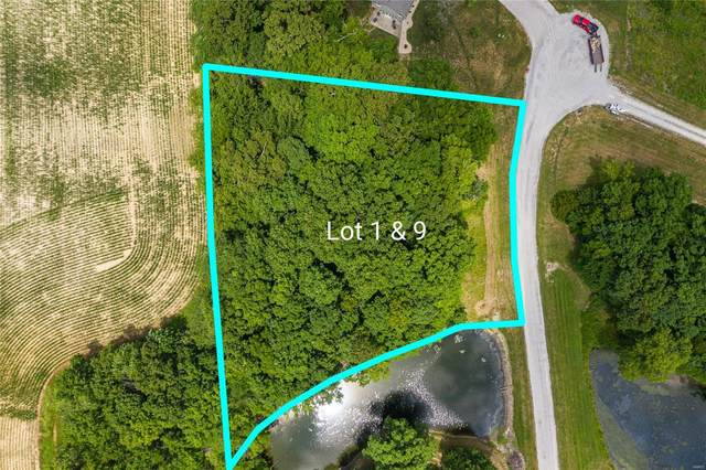 3 Day Spring, LITCHFIELD, IL 62056 (#21016383) :: Realty Executives, Fort Leonard Wood LLC