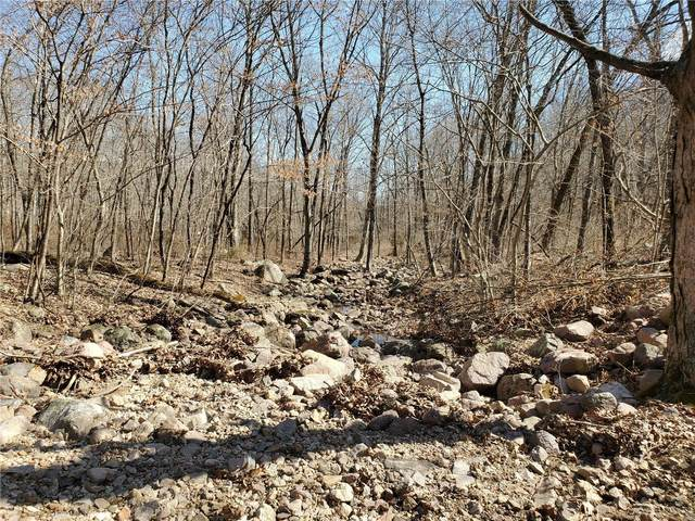 0 120+/- Acres Hwy 21, Ironton, MO 63650 (#21017510) :: Jeremy Schneider Real Estate