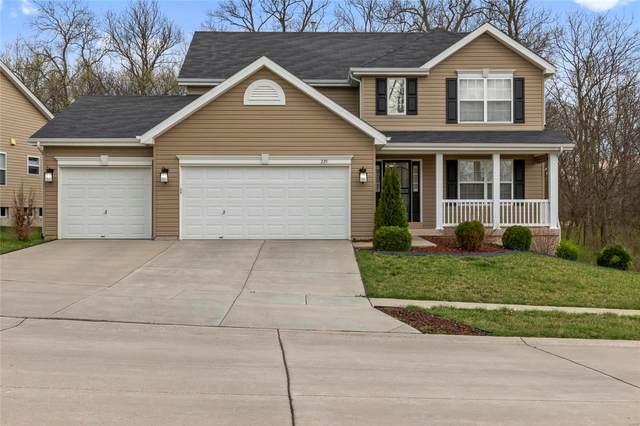 225 Limerick Avenue, Wentzville, MO 63385 (#21018052) :: Kelly Hager Group | TdD Premier Real Estate