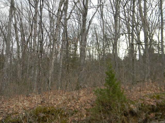 0 Renegade Blk 2, Lot 55 Trail, New Haven, MO 63068 (#21018181) :: Hartmann Realtors Inc.
