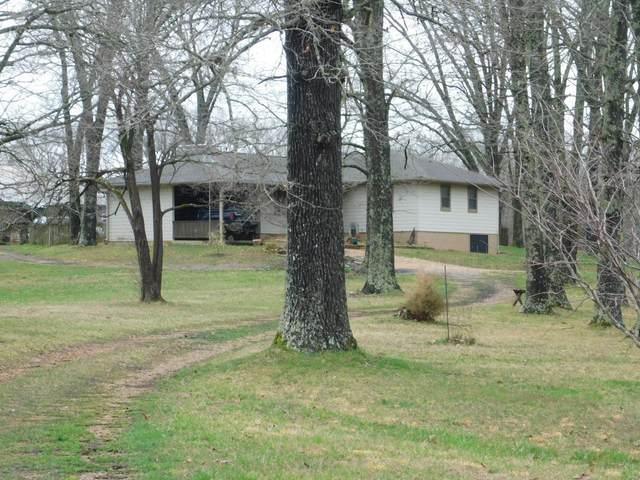 4205 County Road 486, Birch Tree, MO 65643 (#21018896) :: Clarity Street Realty