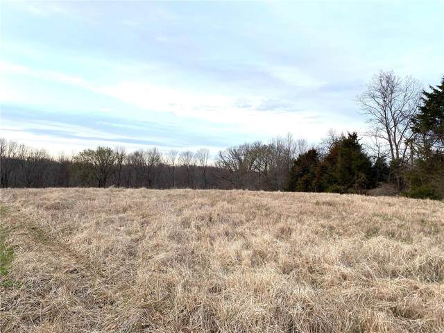 0 Timber Ridge Drive (16.5) Drive, Marthasville, MO 63357 (#21019049) :: Parson Realty Group
