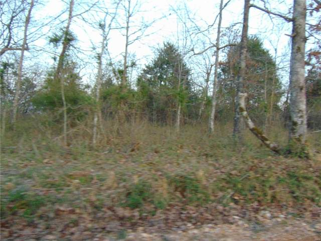 2236002 Ripley Ff1, Doniphan, MO 63935 (#21019107) :: Clarity Street Realty