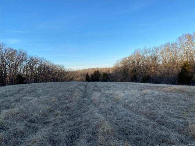 2 Timber Ridge Drive (16.5) Drive, Marthasville, MO 63357 (#21019145) :: Parson Realty Group