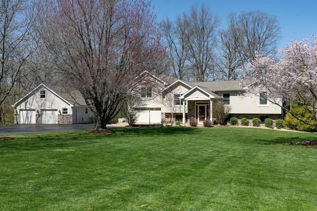 38 Timber Oak Drive, O'Fallon, IL 62269 (#21019771) :: Hartmann Realtors Inc.